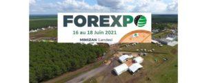 Forexpo 2021